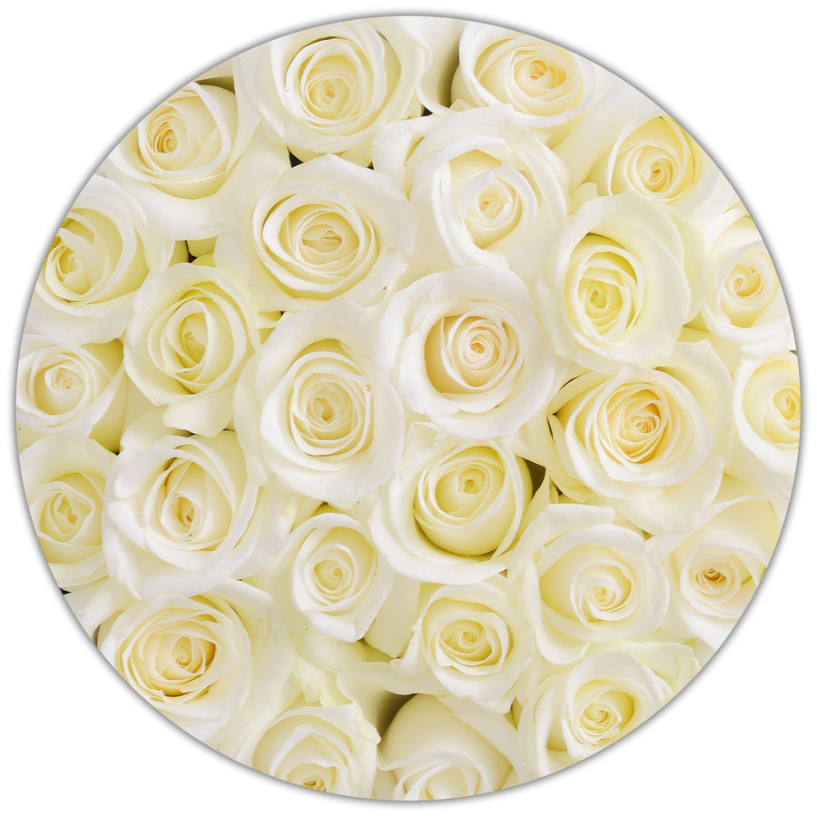Small - White Roses - Grey Box - The Million Roses Budapest