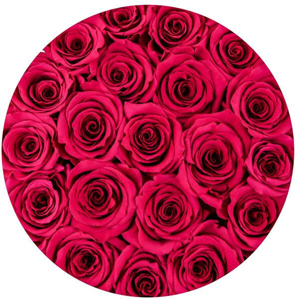 Medium - Hot Pink Roses - White Box