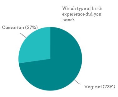 Pie chart showing that among survey respondents 27% had a caesarian birth and 73% had a vaginal birth