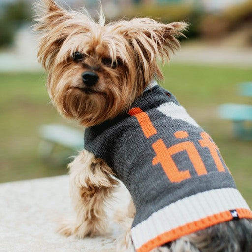 I (HEART) TIFF Dog Sweater