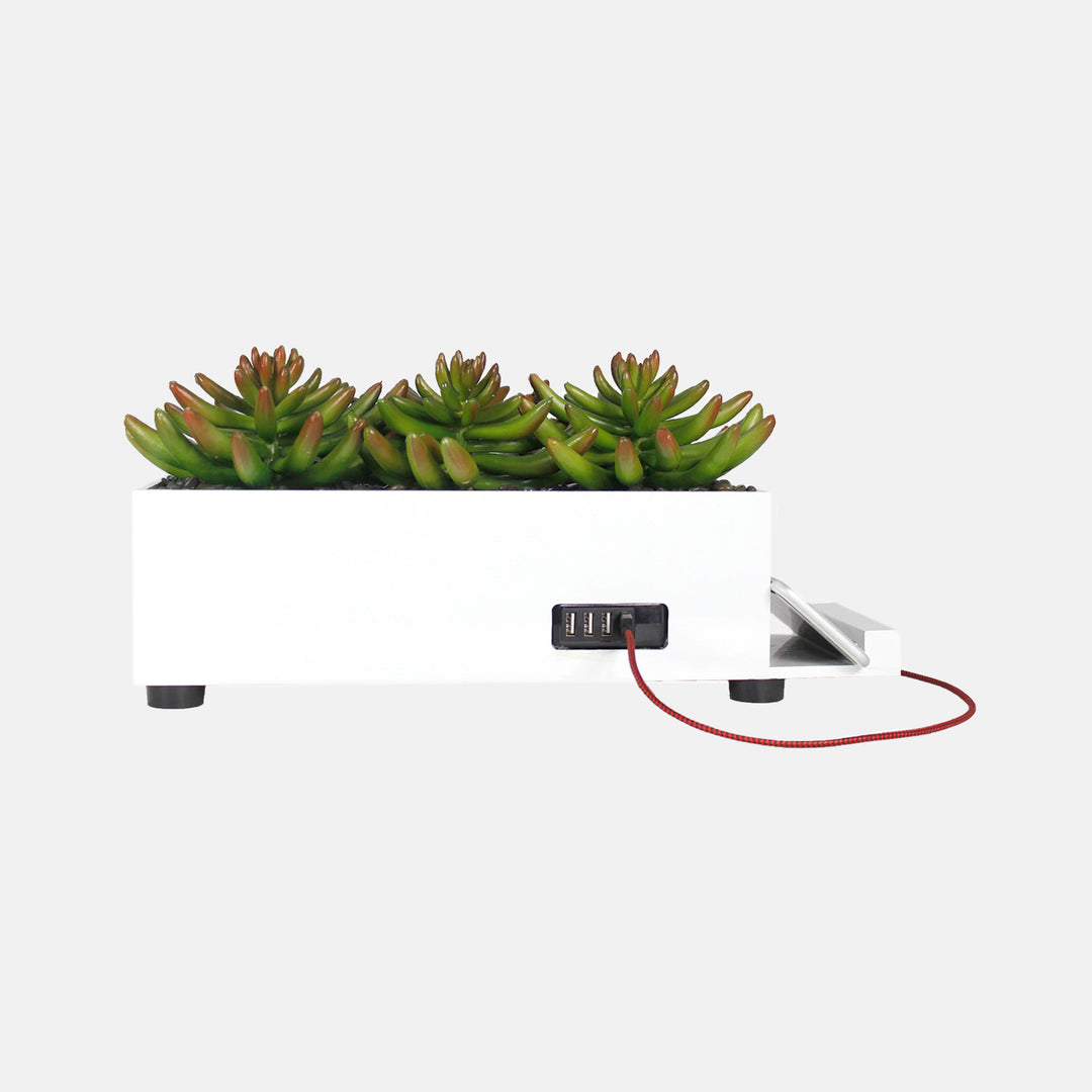 Succulent Charging Station Dormify