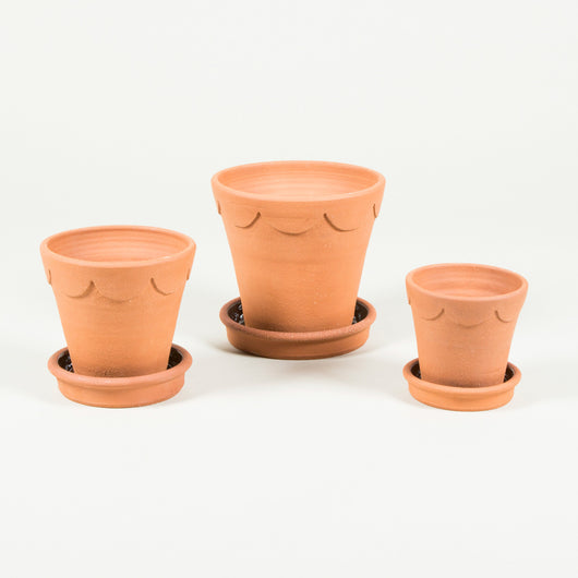 Terracotta flower pots with a scallop decorated rim - with saucers. Top diameter 13cm - £63.00+vat. Top diameter 16cm - £90.00+vat. Top diameter 21cm - £107.5+vat.