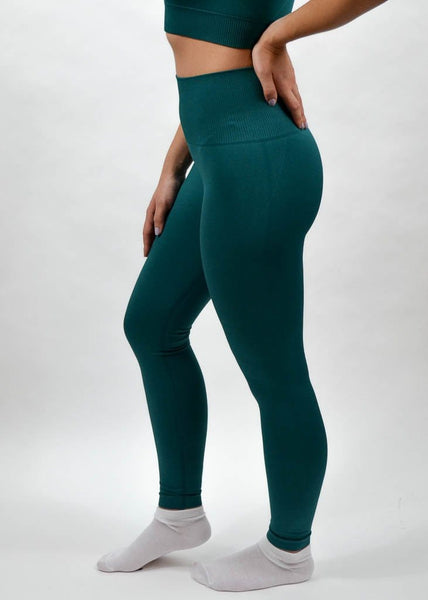 Seamless Flex Leggings- Sweat Industry Apparel Alpine Side