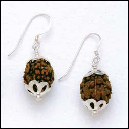 Rudraksha Seed Earrings