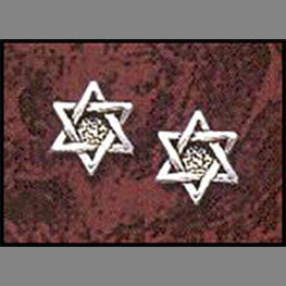 Star of David Post Earrings