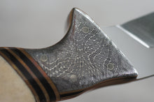 "11 1/4"" - Stainless Steel / Damascus Handle Knife"