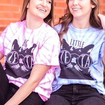 Zeta Tau Alpha Big Little Cool Cat Tee