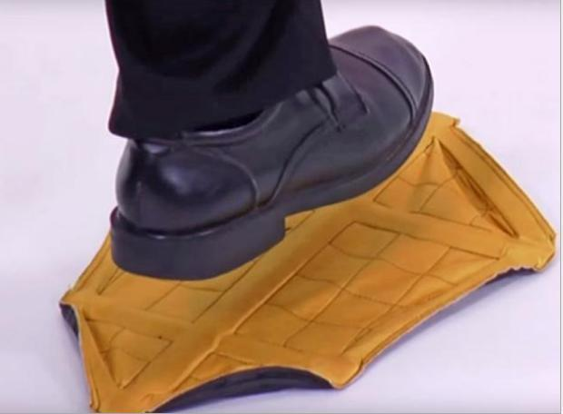 Step-in Shoe Protector