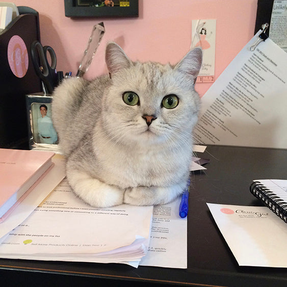 Classic Girl's cat sitting on her desk