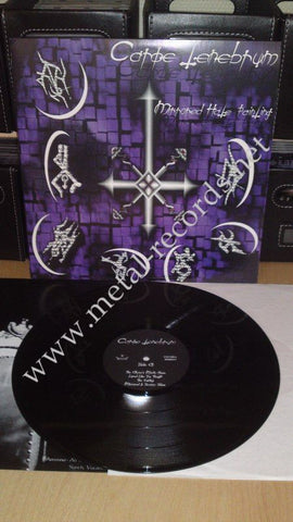 "Carpe Tenebrum - Mirrored Hate Painting (LP 12"")"