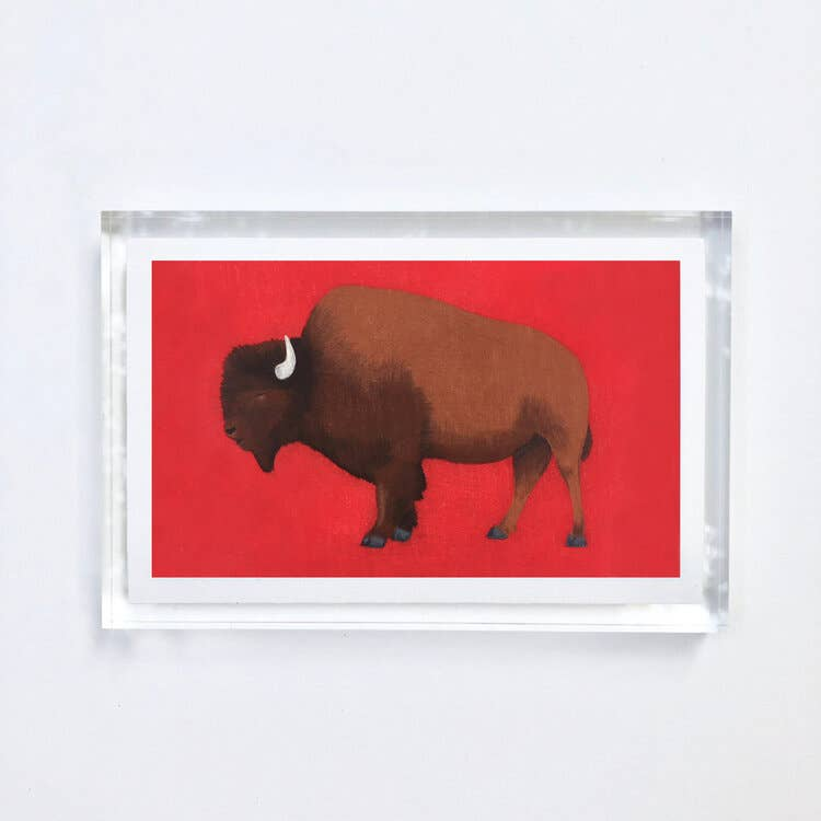 Buffalo Print With Acrylic Frame