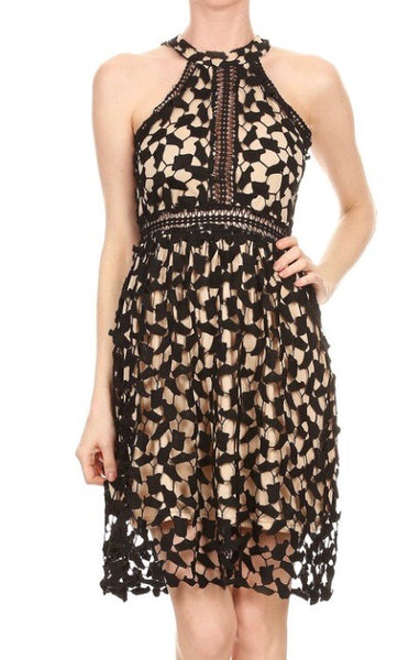 Black lace dress with taupe underlay-Black/Taupe