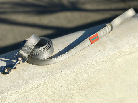 "LIMITED EDITION ""STERLING!"" Lightweight (6 foot) Leash by DodiDog USA(SILVER)"