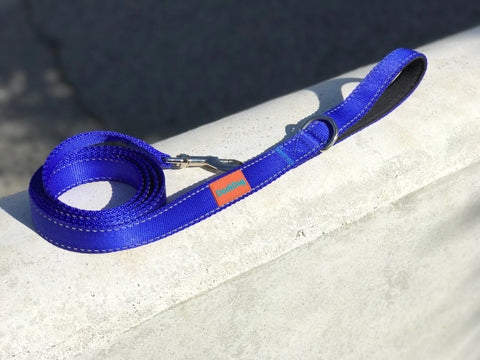 """TRUE BLUE"" Lightweight (6 foot) Leash by DodiDog USA"