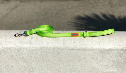 New! Key Lime Lightweight (6 foot) Leash
