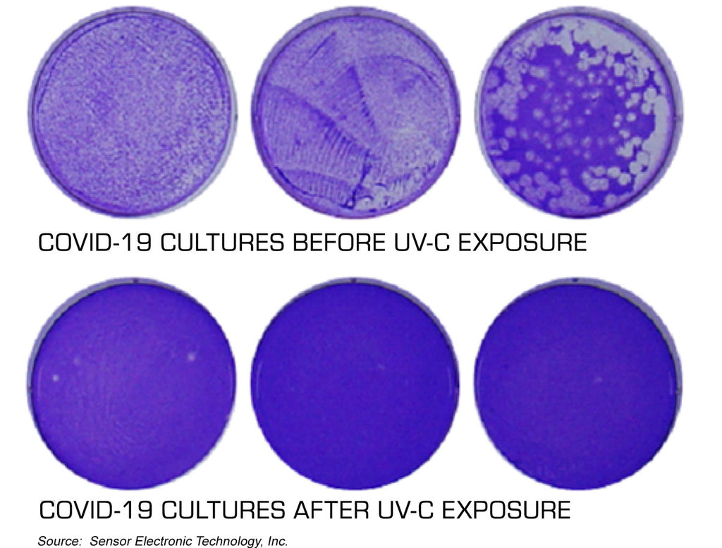 Effectiveness of UV-C LED Irradiation against Coronavirus/ COVID-19