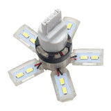 ORACLE 7440 24 SMD 3 Chip Spider Bulb (Single) - Cool White