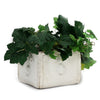 SCALLOPPED: Square Planter  with Fleur de Lis design