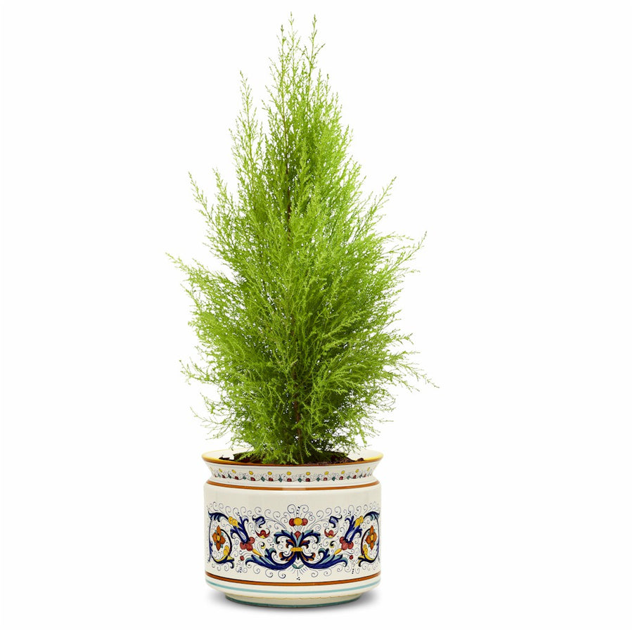 RICCO DERUTA: Cylindrical Cover Pot Ricco Deruta Design - Cachepot Planter (Large)