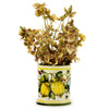 DERUTA CANDLES: Jar Cup Candle with lid ~ Majolica Limoni Toscana Design