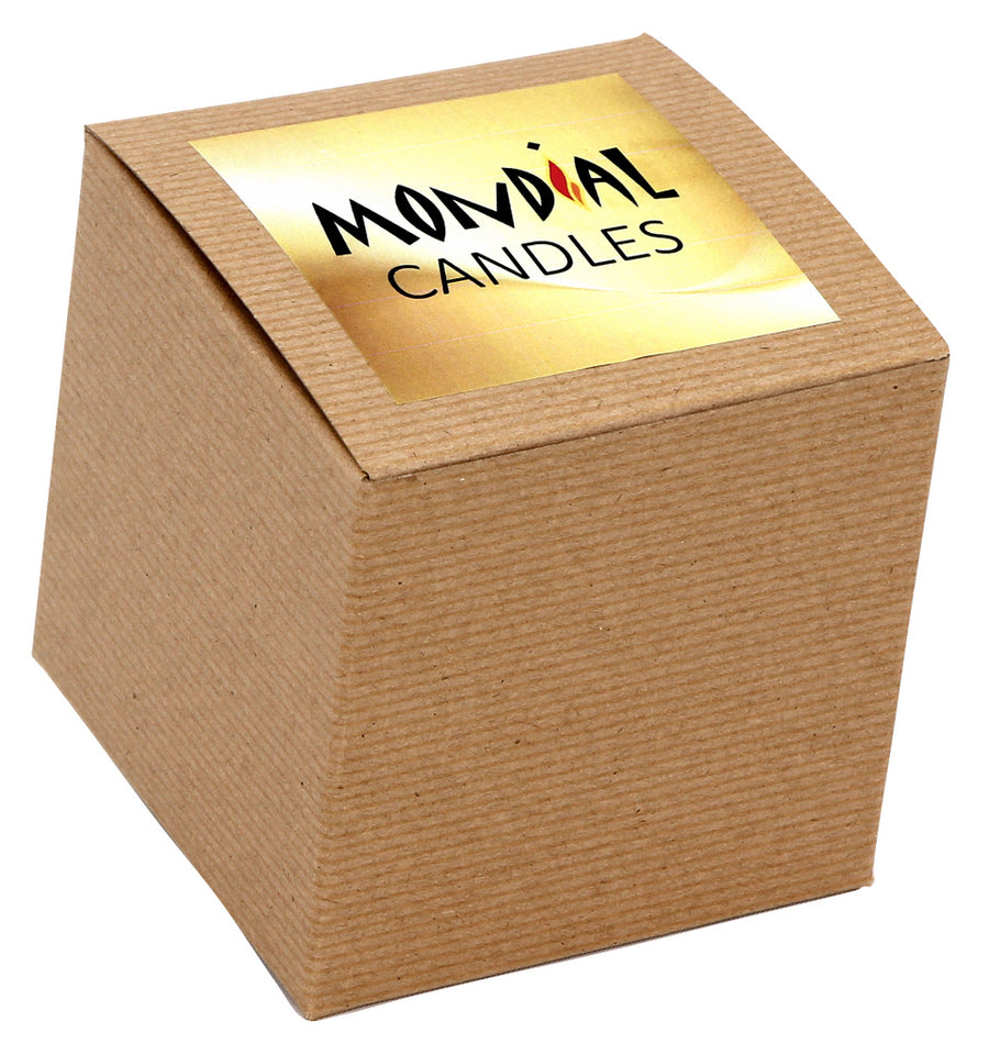 MONDIAL CANDLES: BIANCA Collection - Ceramic Square Container Candle with Four Leaf Clover Shamrock Irish Motif Silver