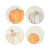 VIETRI: Pumpkins Assorted Salad Plates - Set of 4