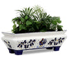 ORVIETO BLUE ROOSTER: Rectangular Jardiniere Planter on feet