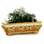 RUSTICA SICILIA: Rectangular Planter (Medium) (NEW)