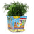 LA MUSA: Large Square Planter Porticciolo Harbor Fisherman Boar SKY BLUE