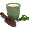 VECCHIA TOSCANA: Large Candle Kaki Green (12 Oz)