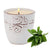 Salvia SAGE Scented Candle -  Large Ceramic Candle with bass relief tree branches motif (12 Oz)