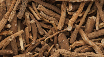 Ashwagandha, The Herb That Promotes Mood And Energy