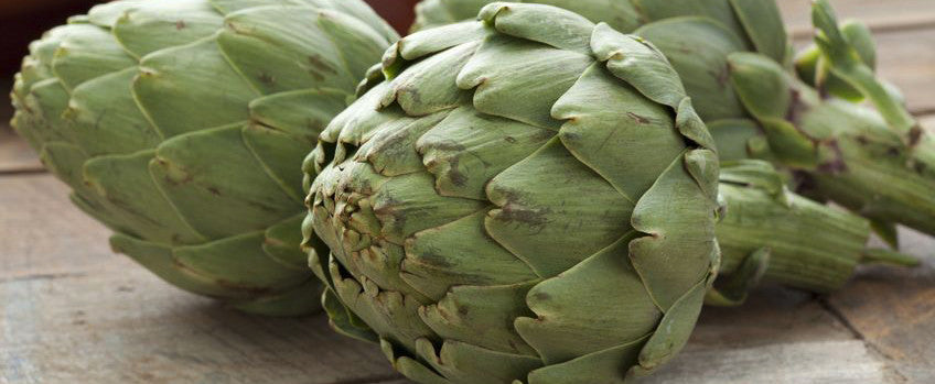 Growing artichokes, both a reward and a treat!