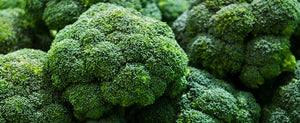 Growing Broccoli, A Gardener's Perfect Guide