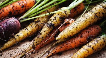 Growing Carrots From Seeds - Easy and Rewarding