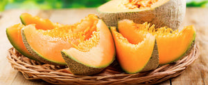 Growing Melons: The Art of Growing Cantaloupe