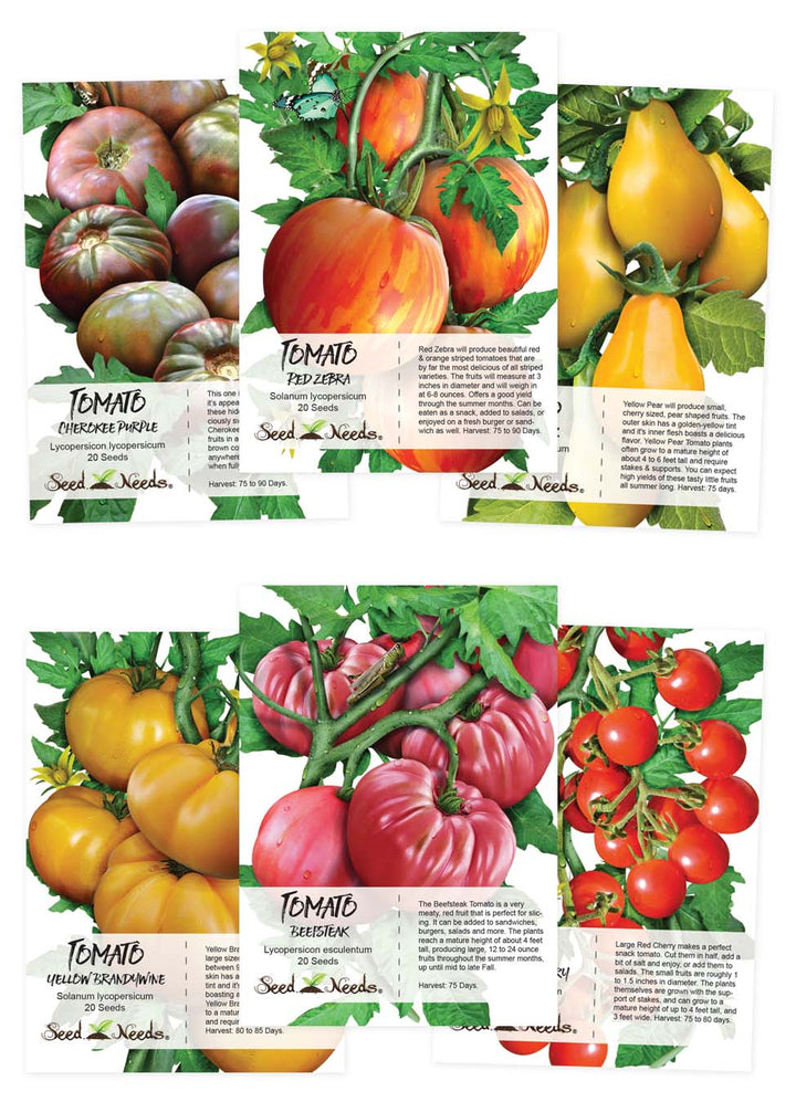 Multicolor Tomato Seed Collection