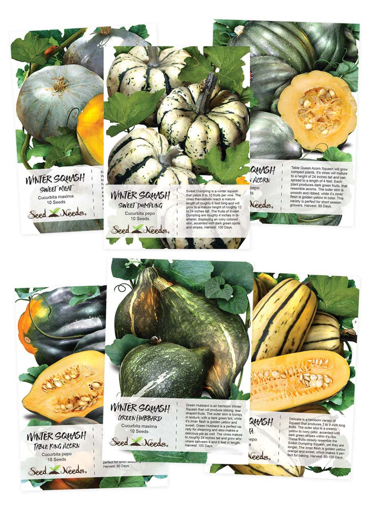 Winter Squash Seed Collection