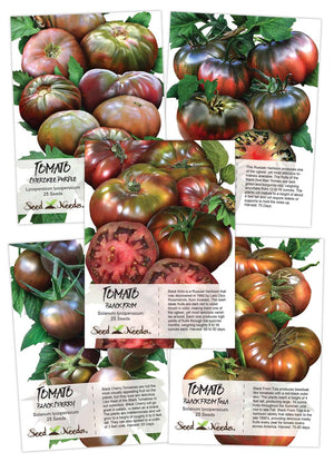 Black Tomato Seed Collection