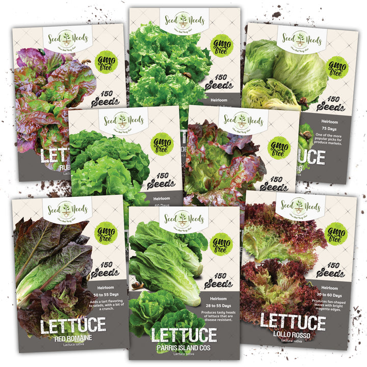 lettuce lovers seed collection