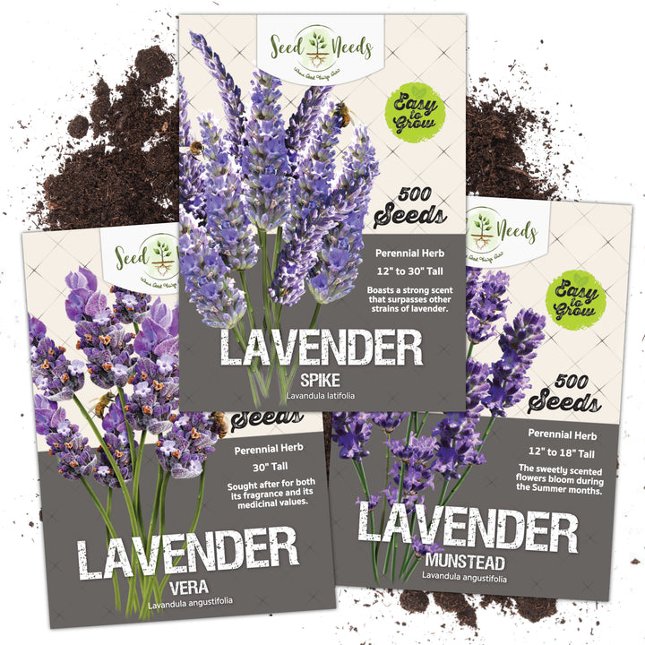 Lavender Seed Collection