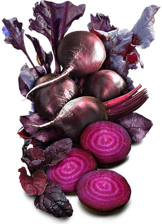 Bulls Blood Beet Seeds (Beta vulgaris)