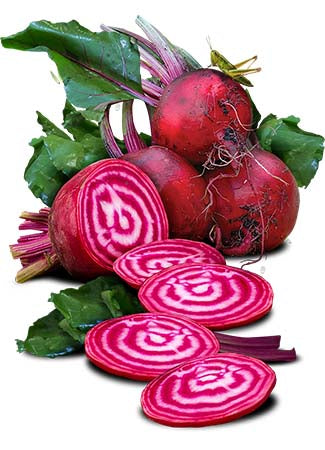 Chioggia Beet Seeds (Beta vulgaris)