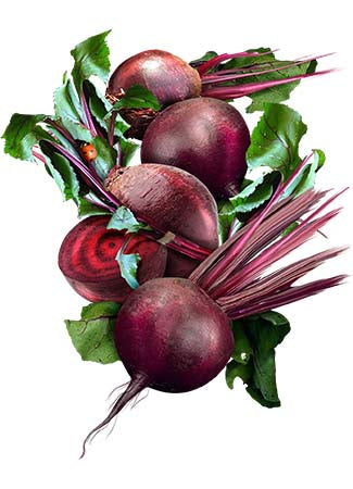 Ruby Queen Beet Seeds (Beta vulgaris)