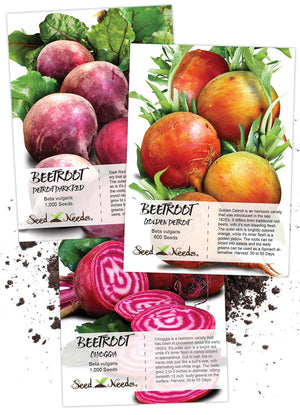 Beetroot Seed Collection