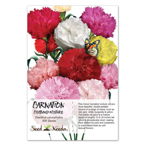 Carnation Seeds, Chabaud Mixture (Dianthus caryophyllus)