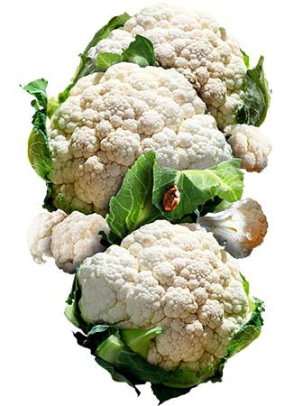 Snowball Y Improved Cauliflower Seeds (Brassica oleracea)