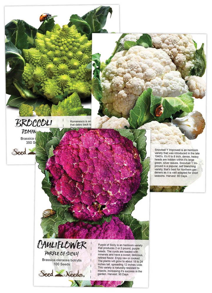 Cauliflower Seed Collection