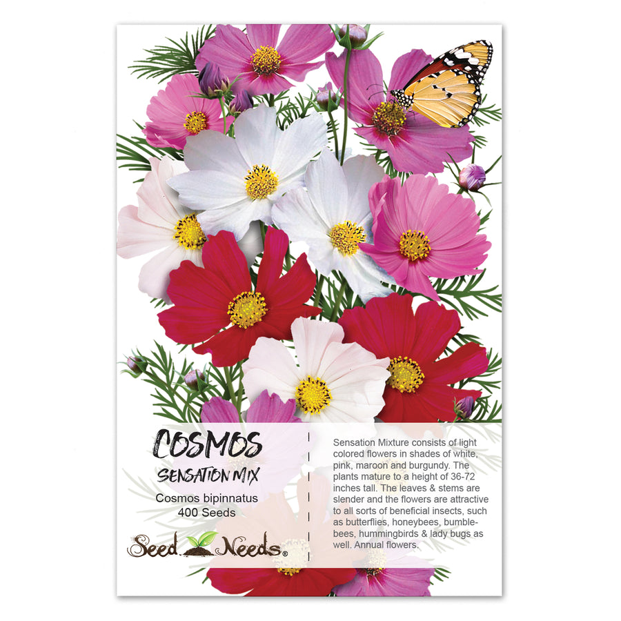 Sensation Mixed Cosmos Seeds (Cosmos bipinnatus)