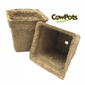 "3"" CowPots, Set of 20 Biodegradable Starter Pots"